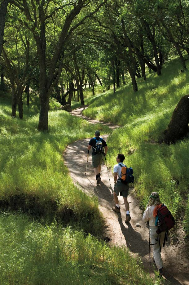 Hikers on the Trail at Shell Ridge Open Space