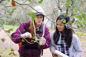 Learning phenology, photo by Jacoba Charles