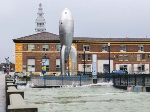 Pier 2 on the Embarcadero in San Francisco on an extreme high tide. Photo by Sergio Ruiz