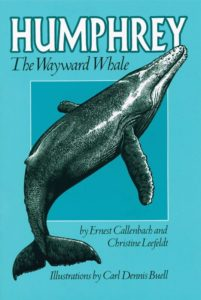 """""""Humphrey the Wayward Whale"""" tells the true tale and adventures of Humphrey, a humpback whale who wandered seventy miles into the San Francisco Bay in 1985. By Ernest Callenbach and Christine Leefeldt."""